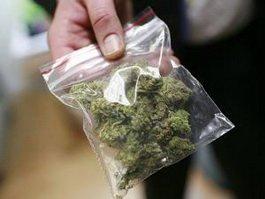Срок за торговлю марихуаной купить марихуану в брянске