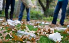 Общественная организация «Зеленый город» приглашает на субботник в «ГРЭСовский лес»