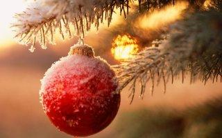 В период зимних праздников жителей и гостей города ждёт много приятных сюрпризов