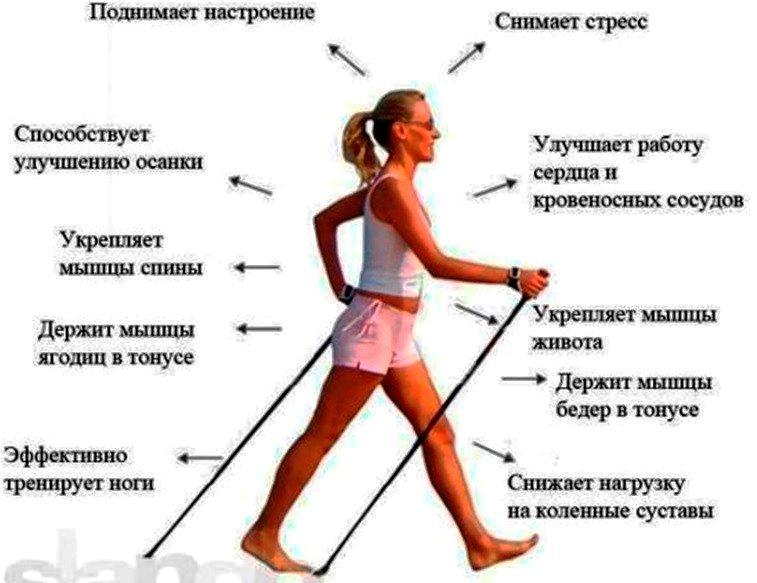 Эффективна ли ходьба для похудения